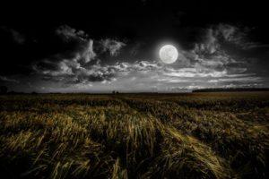 Chandra Moon