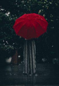 Red Coloured Nakshatra Rohini