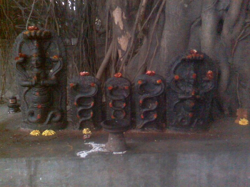 Snake deities on Nag Panchami