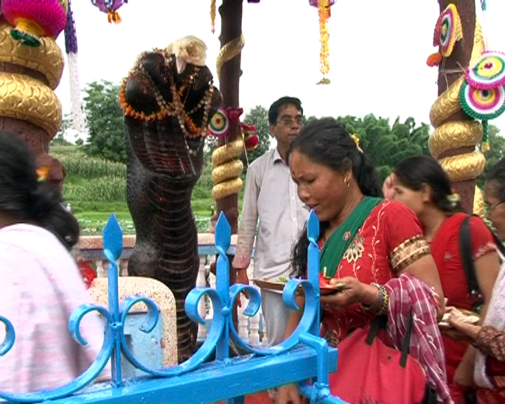 Nag Panchami worship of a snake deity