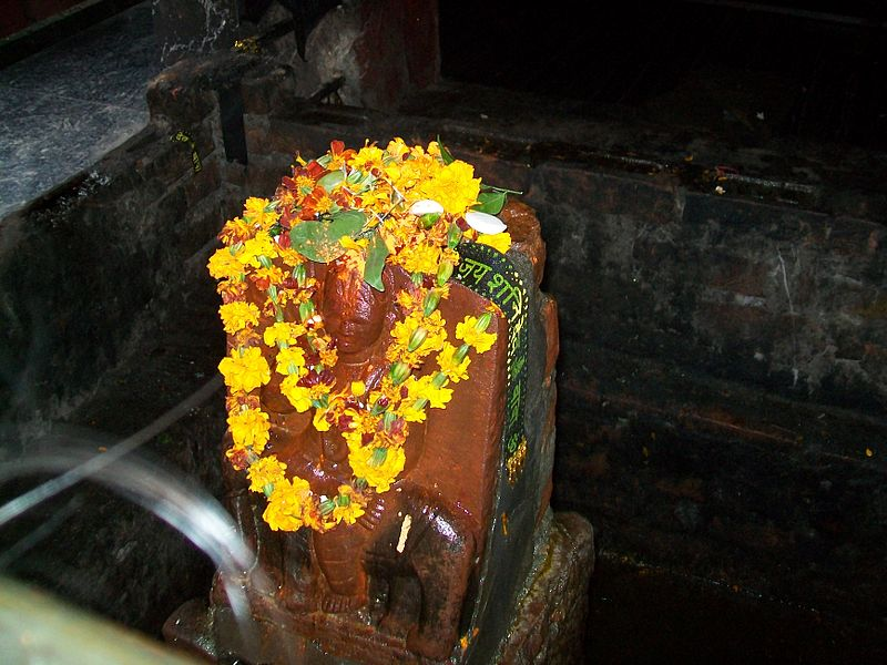 Idol worship on Shani Jayanti