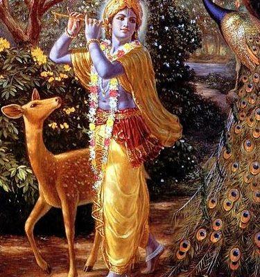 Vidya Gopala Mantra