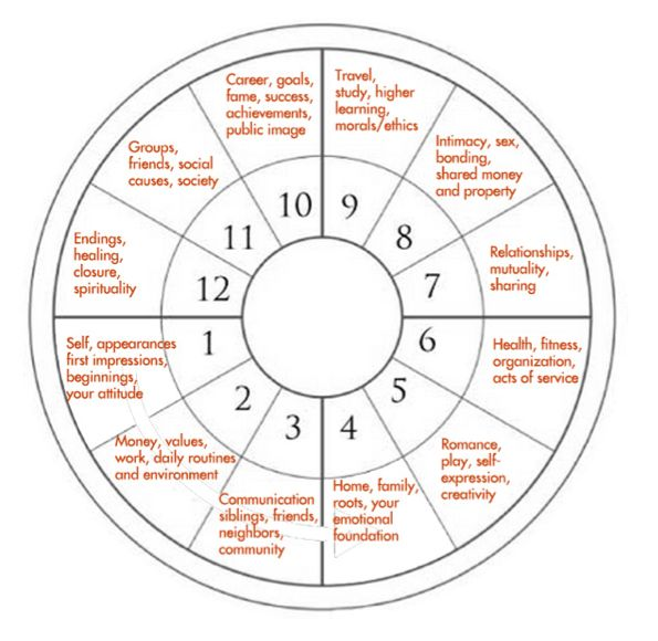10 houses in astrology with 10th house for choosing your career by astrology