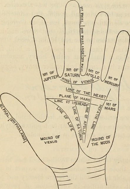 Palmistry lines and mounts