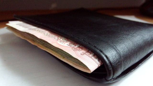 Wallet with Indian Money