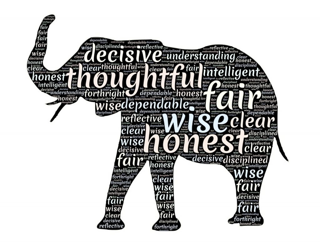 Elephant figure filled with personality types