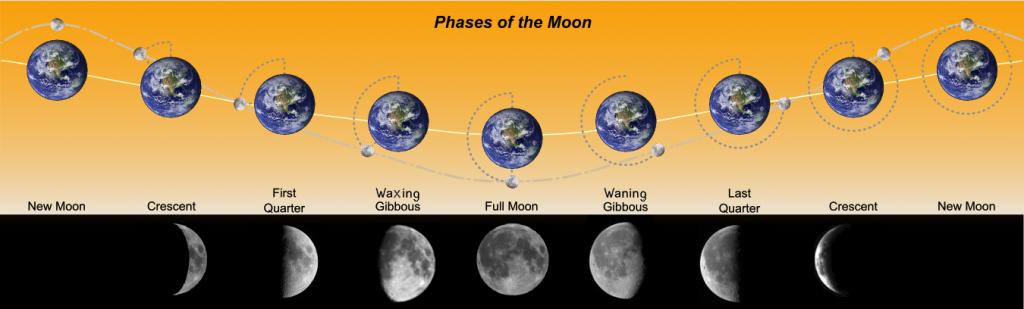 Moon Phases - Moon Mahadasha