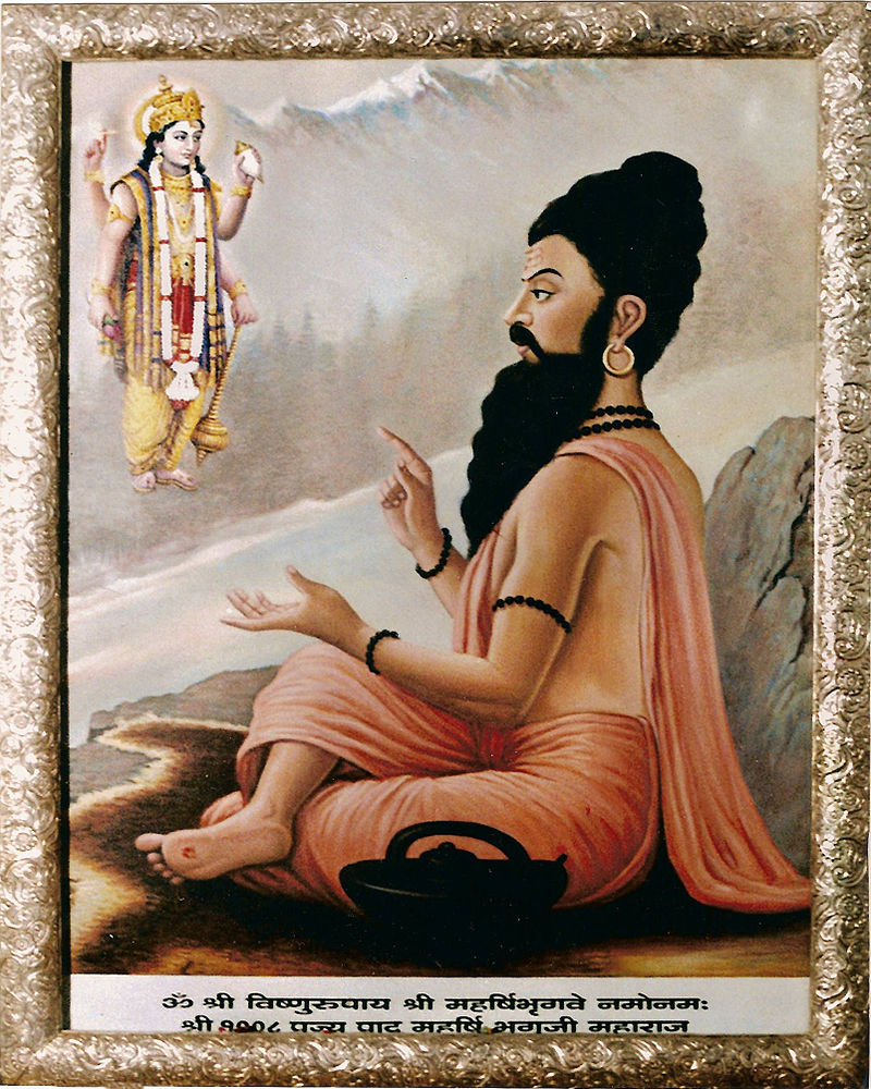 Maharishi Bhrigu, one of the Saptarishis