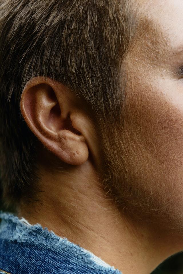 Shravana - Ears